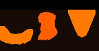 ny-logo-edm1